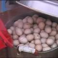 Huevos de niños virgenes