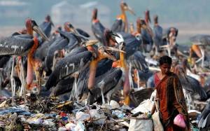 Todos por la basura