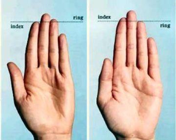 Longitud de los dedos y tamaño del pene
