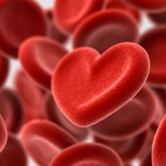 El grupo sanguine y el amor