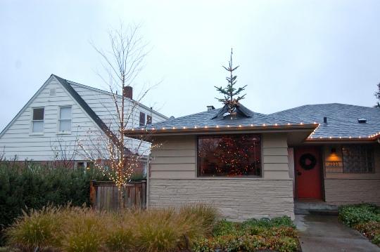 Fallido árbol de navidad