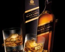 Whisky le salva la vida