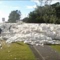 'Foam Day' (día de la espuma).
