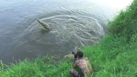 fotogrfo es atacado por cocodrilo