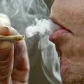 Fumar marihuana provoca tendencias homosexuales