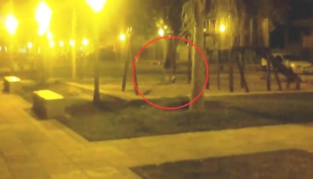 El fantasma de la Hamaca embrujada