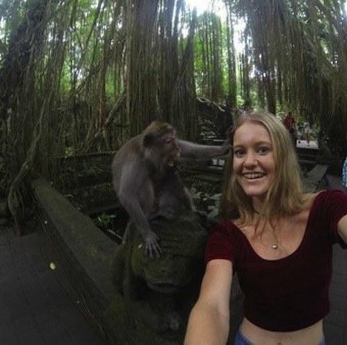 selfie con mono 02