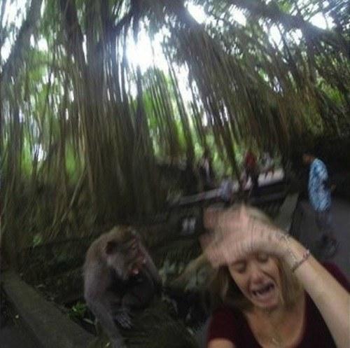selfie con mono 03