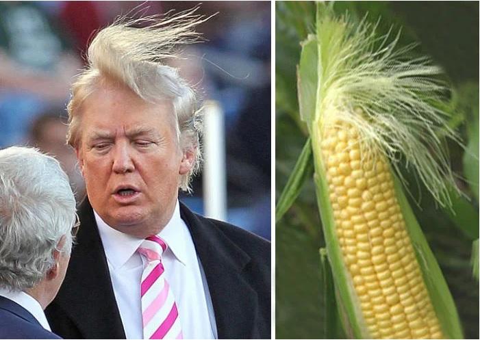 donald Trump parecido