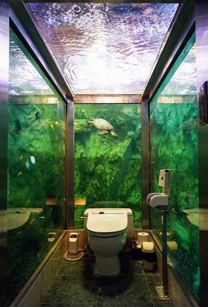 toilet-japon-Acuario