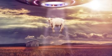 vaca-abducida-´por-ovni