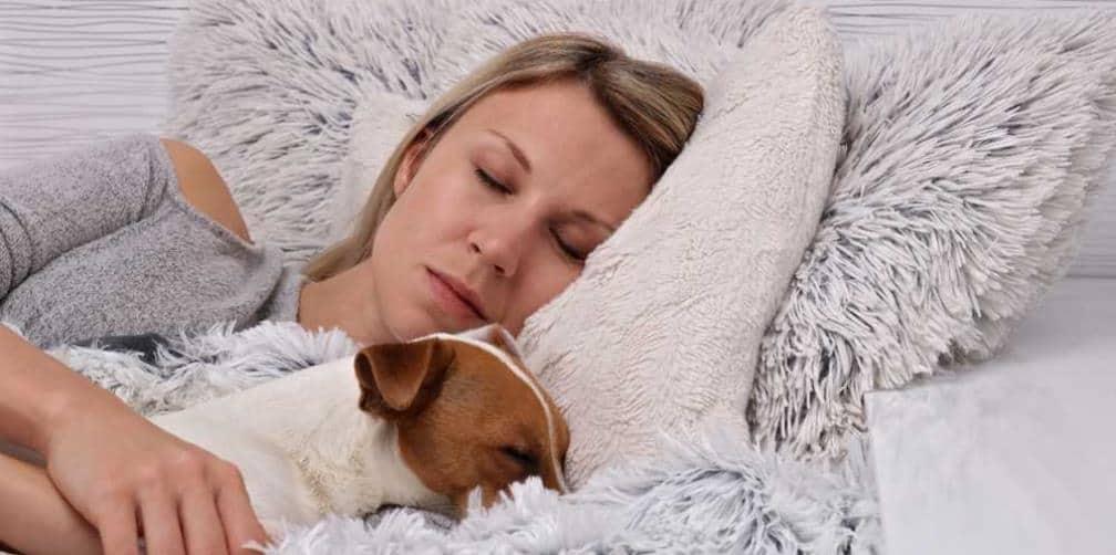duerme con su perro