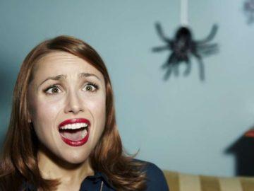 fobia-araña-suegra